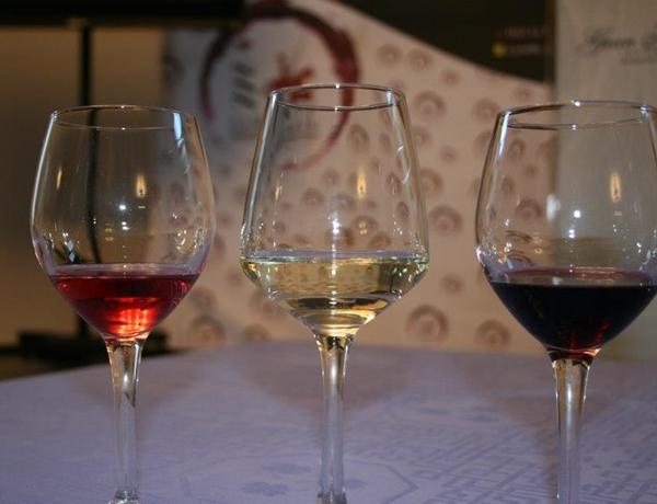 4-vinos-de-la-mancha-culto-al-vino1