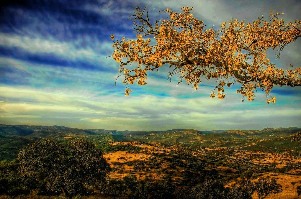 Sierra Morena. Último refugio natural de Europa
