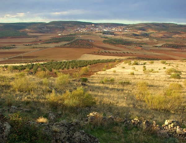 ruta-senderismo-naturaleza-terrinches-toros-bravos-turismo-la-mancha-sabersabor