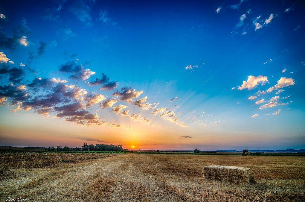 Y amaneció en La Mancha