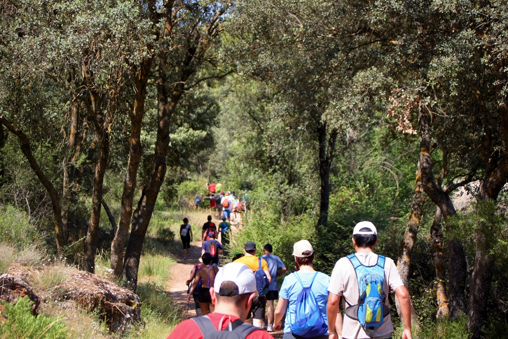 Villahermosa Alto Guadiana ecoturismo senderismo interpretativo Lagunas de Ruidera turismo sostenible sabersabor La Mancha Ciudad Real