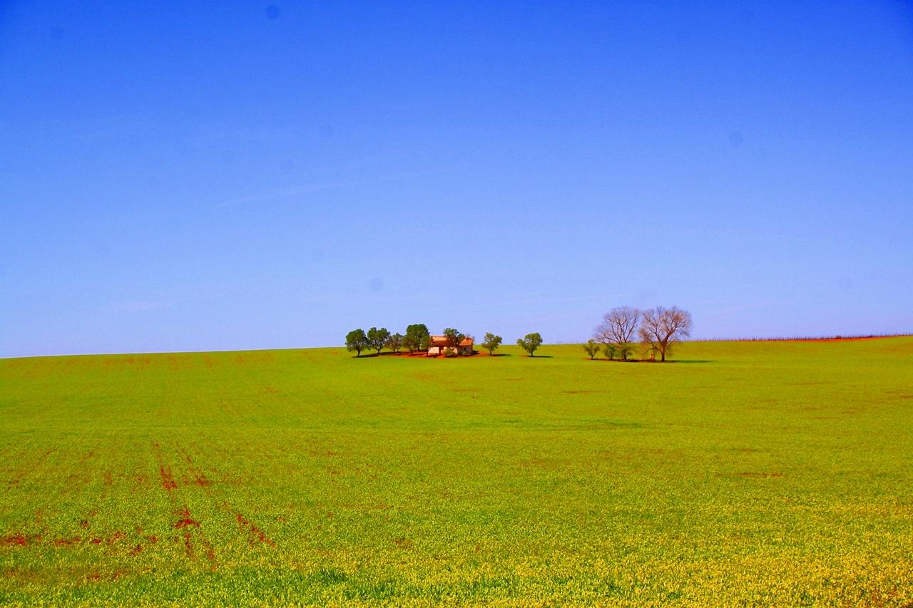 Campo de Montiel