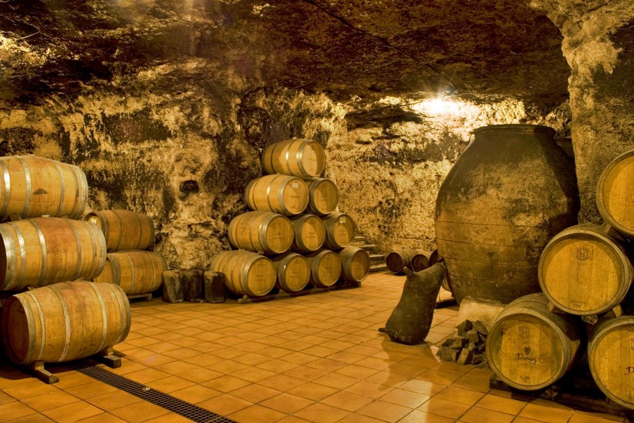 Barricas en la cueva de Bodega de Las Estrellas