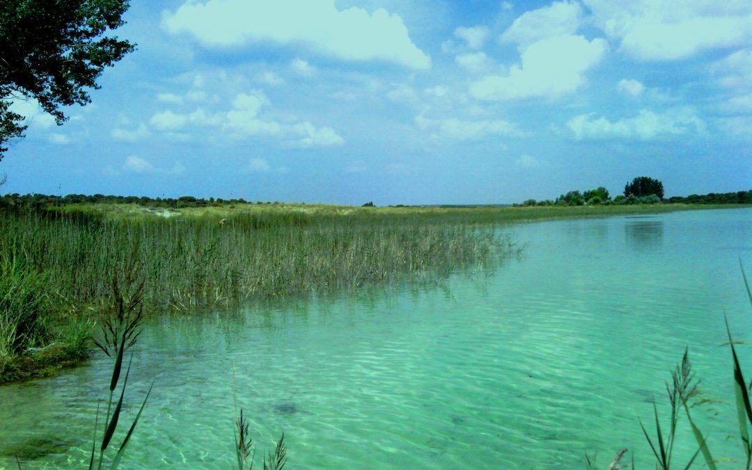 Por qué es blanca la Laguna Blanca de Villahermosa