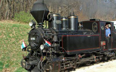 Entre carbón, viñas y raíles: los viejos trenes de Puertollano