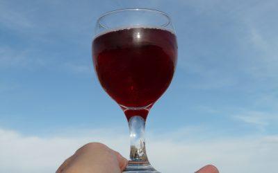 A su salud. La historia más alocada del vino (1ª parte).