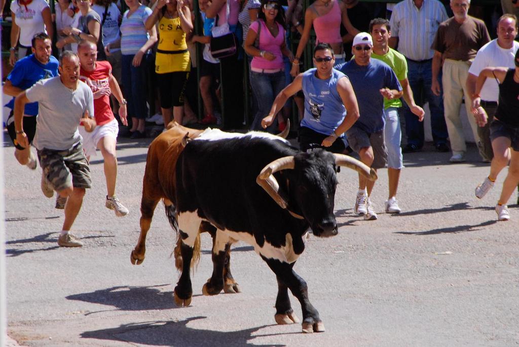 Almodóvar del Campo. En la tierra de los Encierros más antiguos de España