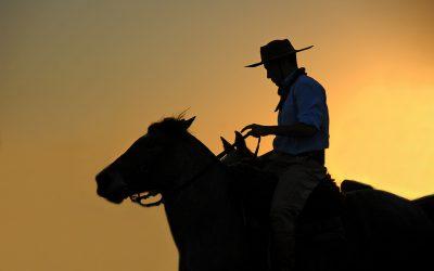En los dominios del gaucho. Darwin y su aventura patagónica