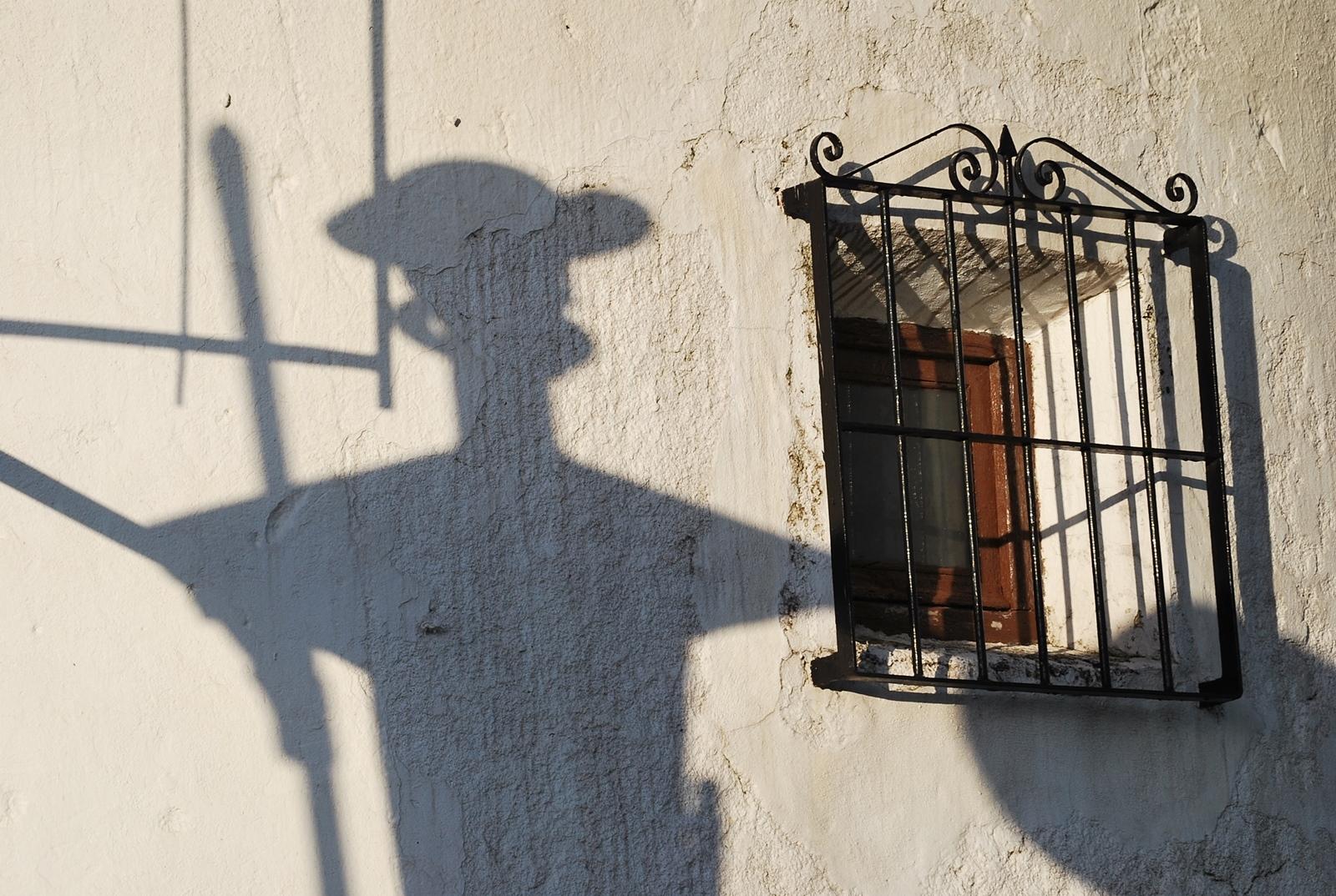 La sombra de Don Quijote. Autora, Maite Moya Díaz - Pintado