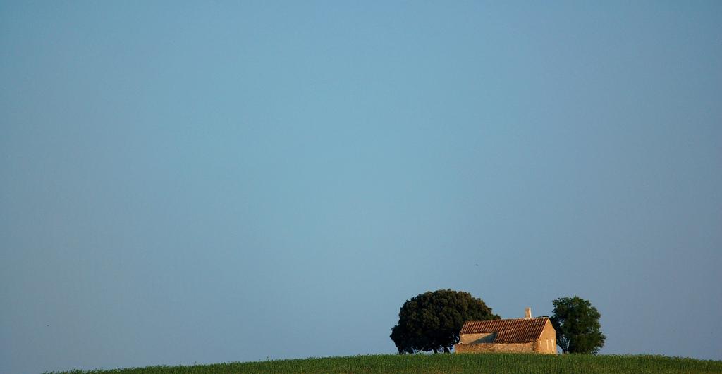 Atardecer en La Mancha. Autor, Diego Sevilla Ruiz