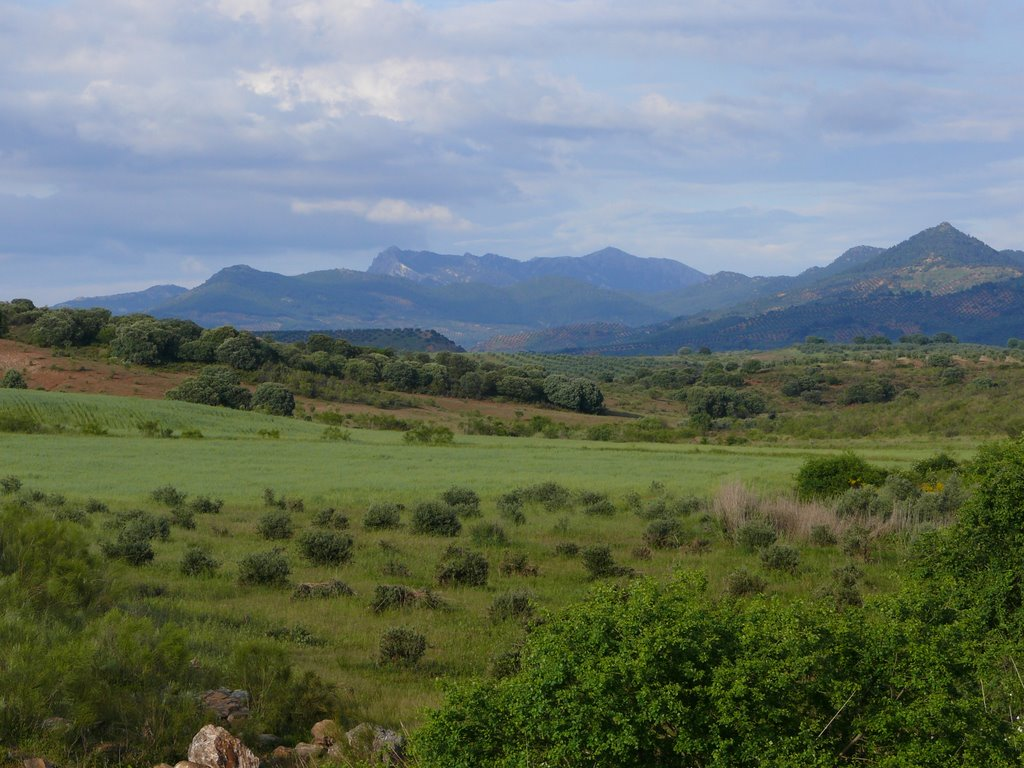 Vista de Sierra Morena desde los Campos de Montiel. Autor, Rufino Jiménez