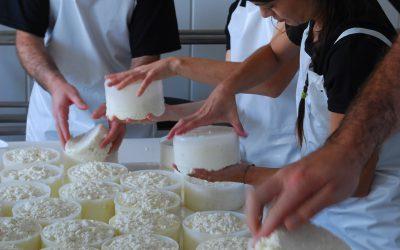 Un vistazo al pasado: la elaboración tradicional del Queso Manchego
