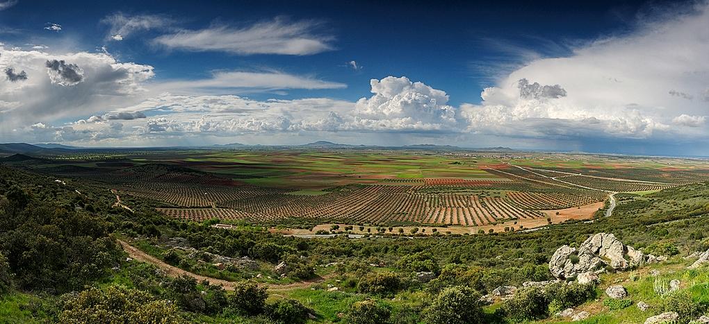 La Mancha. Autor, Gregorio Pérez Saavedra