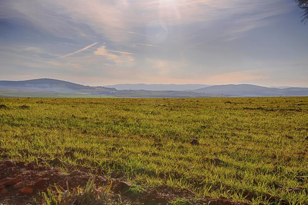 Paisaje del Campo de Montiel. Autor, Fran J de Lamo S