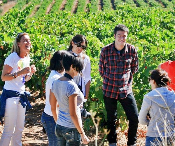 Turismo en Castilla La Mancha