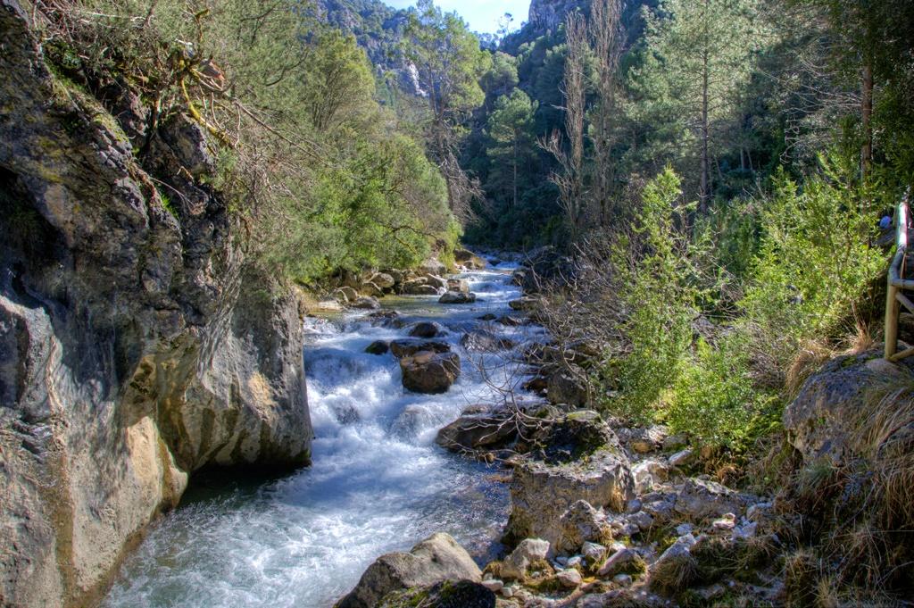 Río Borosa. Autor, Cristóbal Poyato
