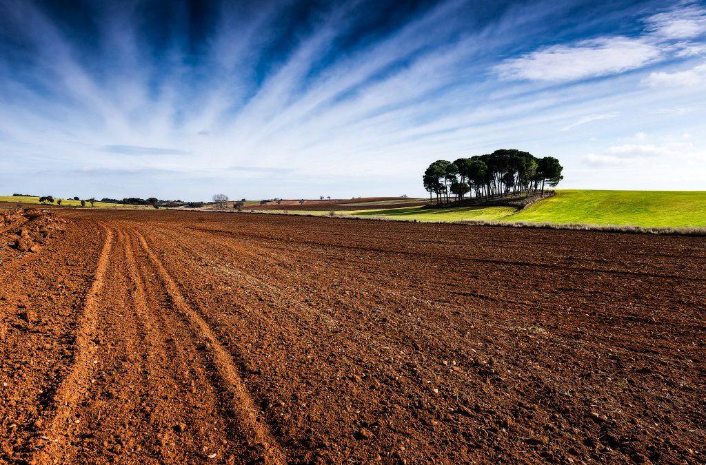 Contrastes de La Mancha