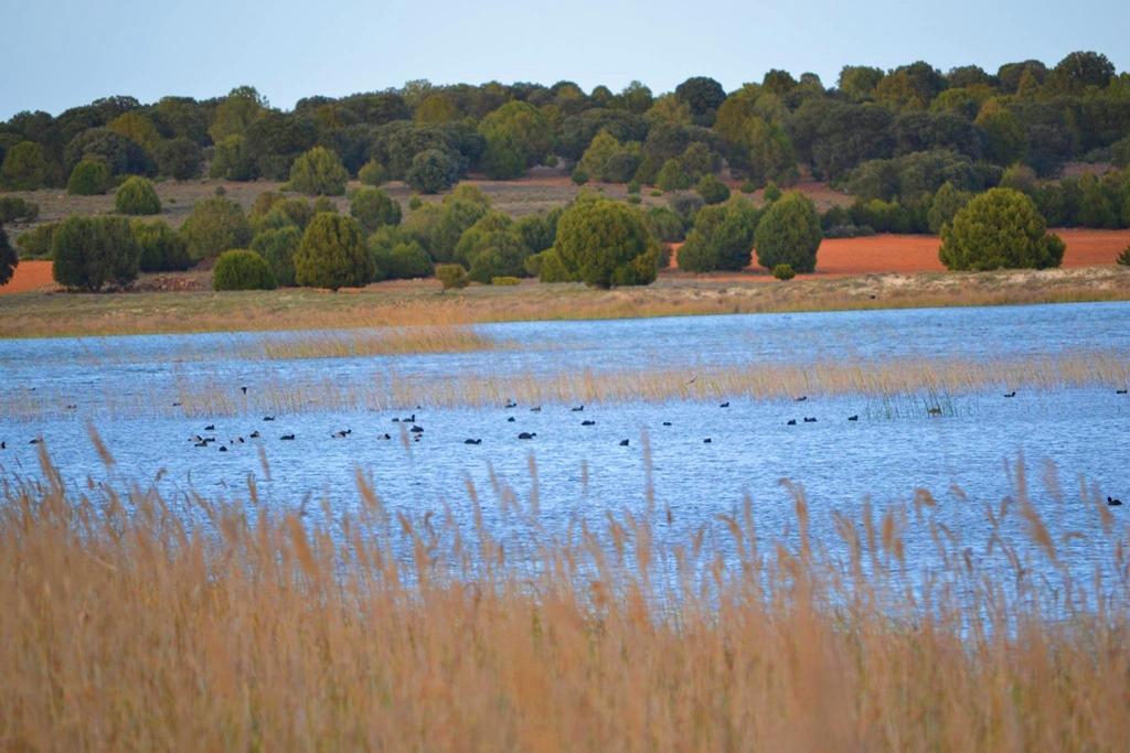 La Laguna Blanca de Villahermosa con las sabinas al fondo. Autor, Miguel Andújar