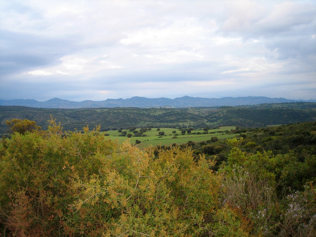 Vista de la Sierra del Relumbrar. Autor, mjacintomm2