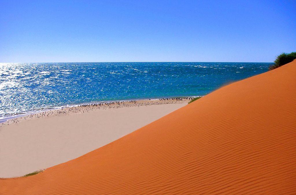 Australia. Un viaje por el edén terrenal