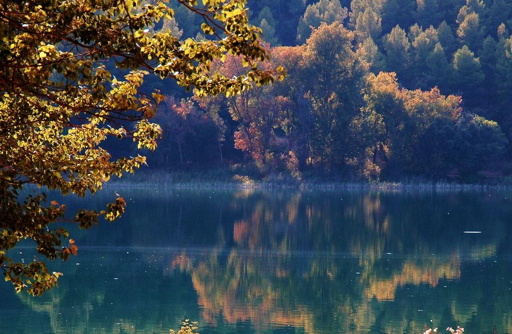 bosque-en-el-parque-natural-de-las-lagunas-de-ruidera-autor-enric-llao