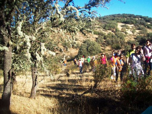 Ruta del Castillo de Montizón a Venta Nueva, la fonda de Don Quijote
