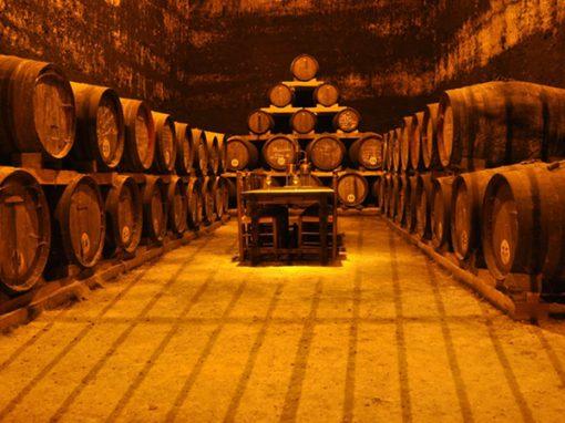 Culto al vino de La Mancha