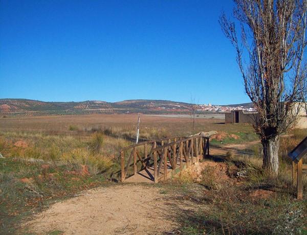 ruta-senderismo-interpretativo-hoces-gongares-terrinches-turismo-naturaleza-3