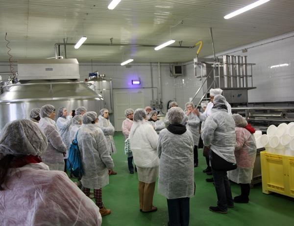 visita-guiada-queso-ganaderos-manchegos-tomelloso