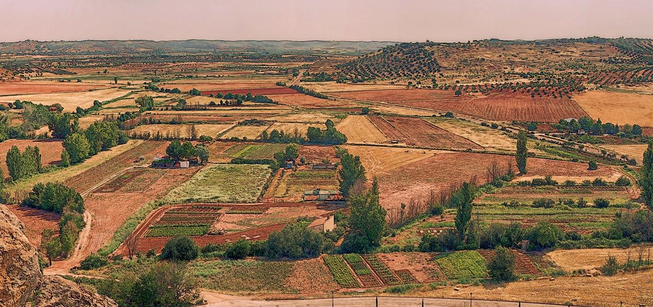 Huertas en el Campo de Montiel