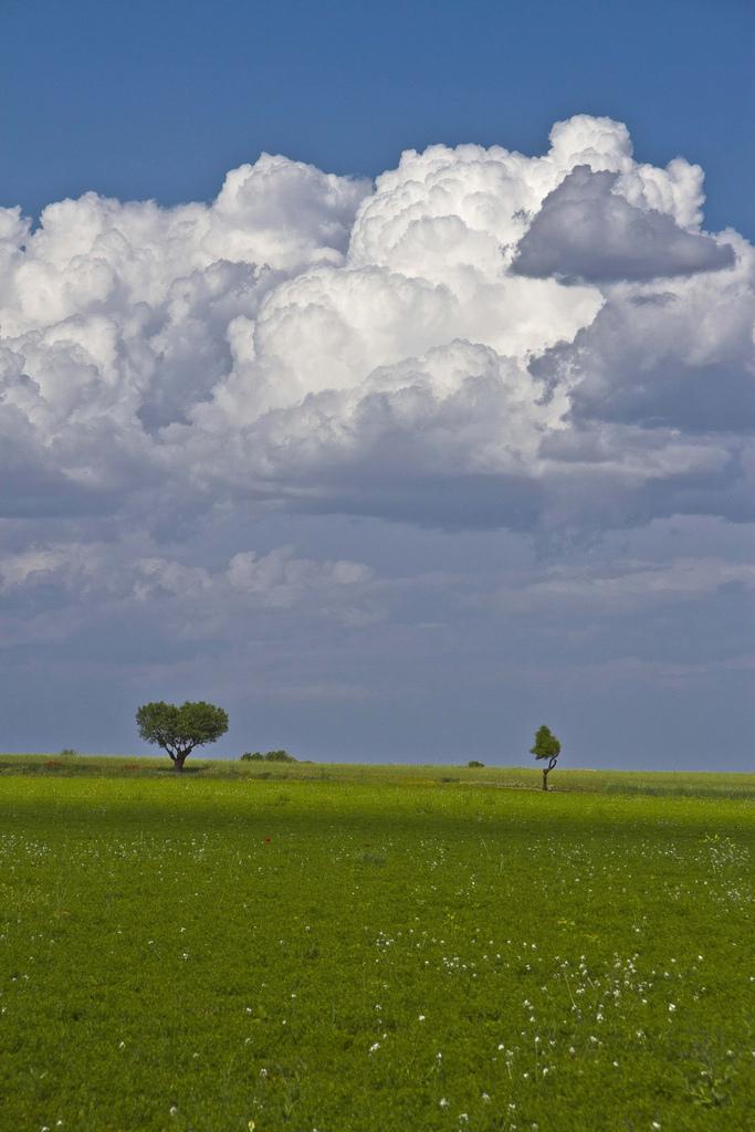 Azul y verde de La Mancha