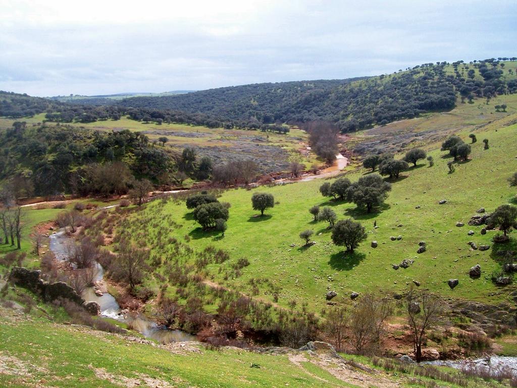 Entre Templarios y el Castillo de Montizón senderismo Campo de Montiel rio Guadalen