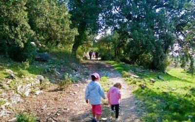 8 Rutas de naturaleza y cultura por el Campo de Montiel