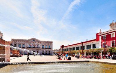 Ruta del Vino de La Mancha: Alcázar de San Juan
