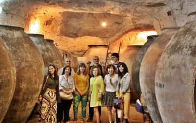 Visita guiada a las antiguas cuevas – bodega de Tomelloso, todos los sábados