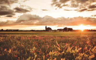 Ruta del Vino de La Mancha: Socuéllamos