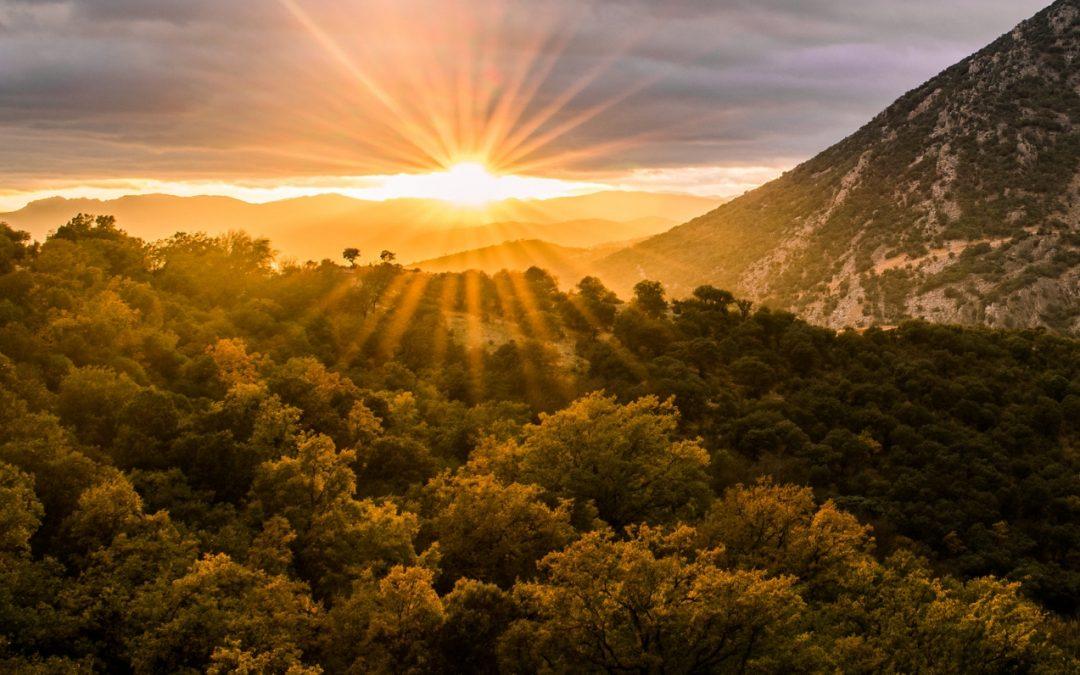 Naturaleza en Castilla – La Mancha (2ª parte)