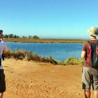 Birdwatching en La Mancha