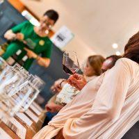 Cata de vinos en bodega de La Mancha