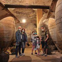 Visita a antigua cueva bodega de Tomelloso